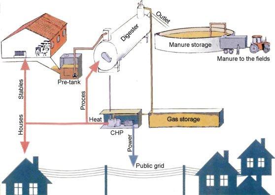 Biogas fra gylle