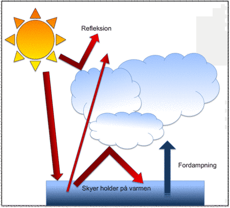 Skyer både køler og varmer vores klima. En del af Solens stråler reflekteres inden de når ind til Jorden. Til gengæld holder skyerne på varmen, og fordampningen fra havene øges pga. den øgede temperatur. Herved dannes flere skyer, der kanholde på varmen. Det kaldes en positiv feedbackmekanisme. Figur: Christina Bramow.