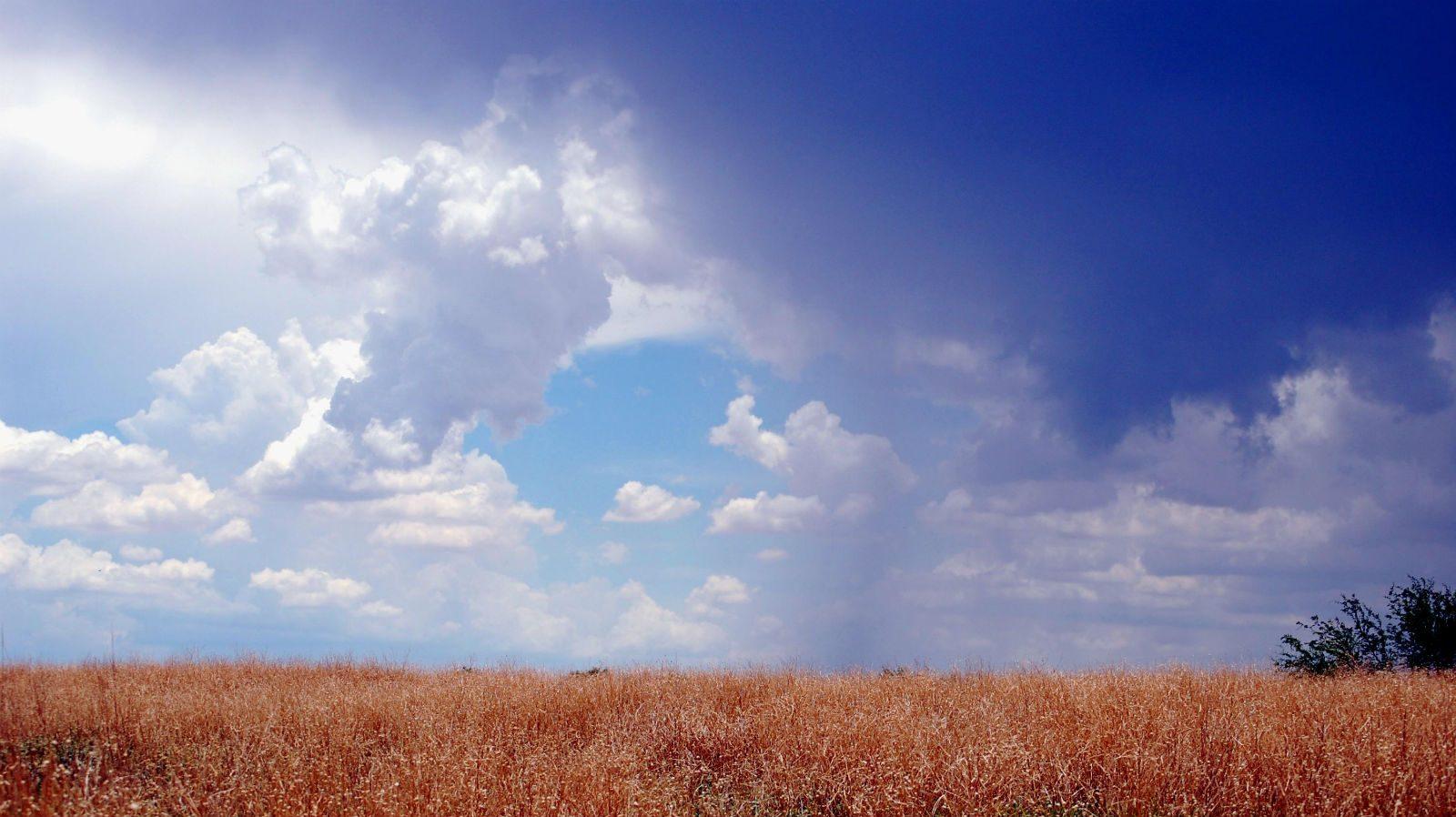 Hvad er klima? Bliv klogere på, hvordan vi definerer klima i denne artikel.
