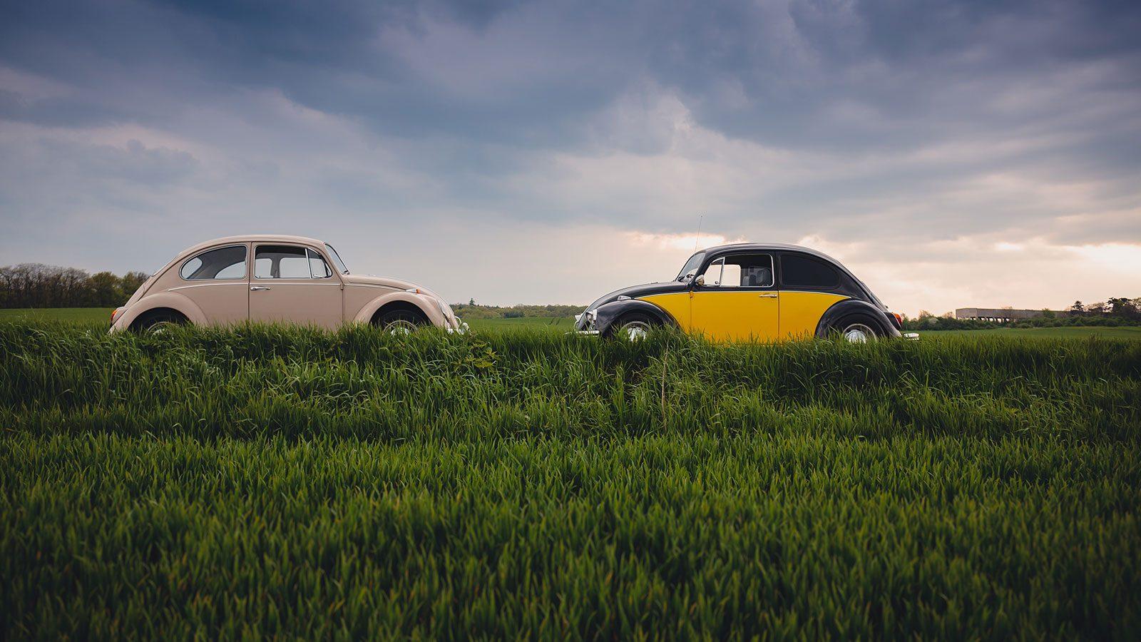 Hvorfor kører danske biler ikke på bioethanol? Foto: Unsplash