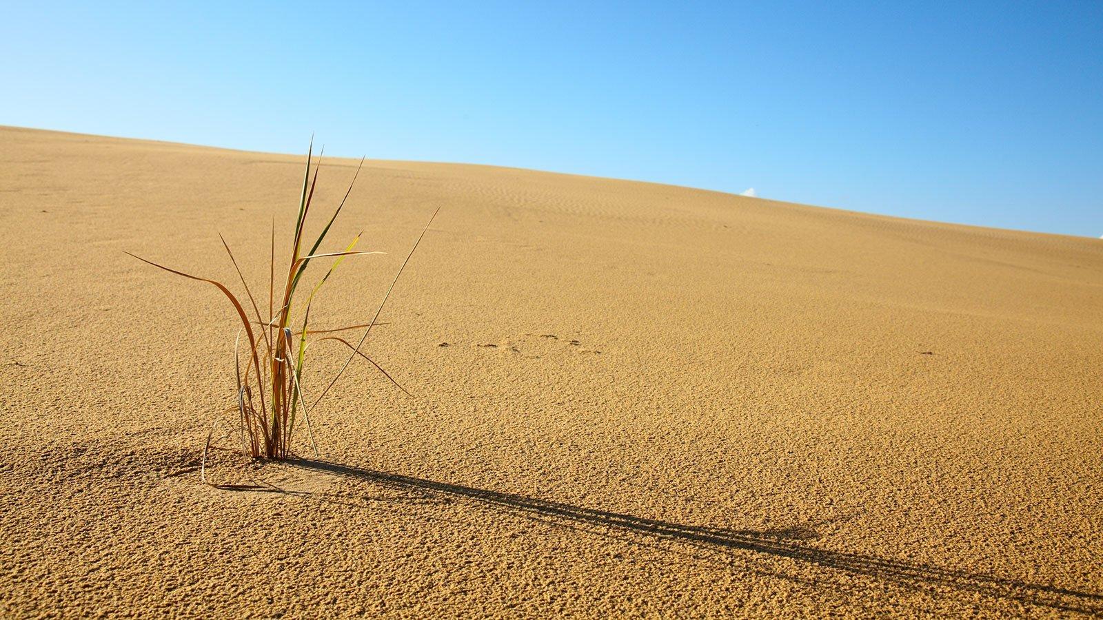 Bliv klogere på klimaforandringer i denne artikel. Foto: Colourbox.