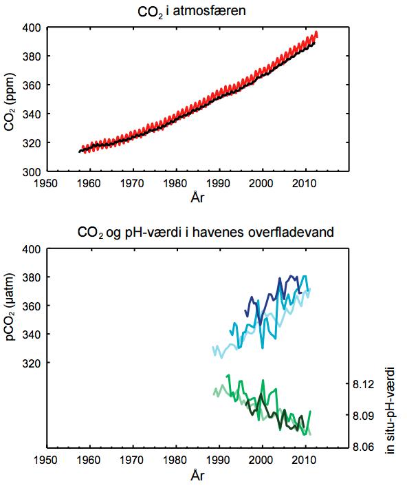 Øverst: Observeret CO2 i atmosfæren. Nederst: CO2 og pH-værdi i havenes overfladevand. Klik på grafikken for at få den større. Kilde: IPCC/DMI s. 10.