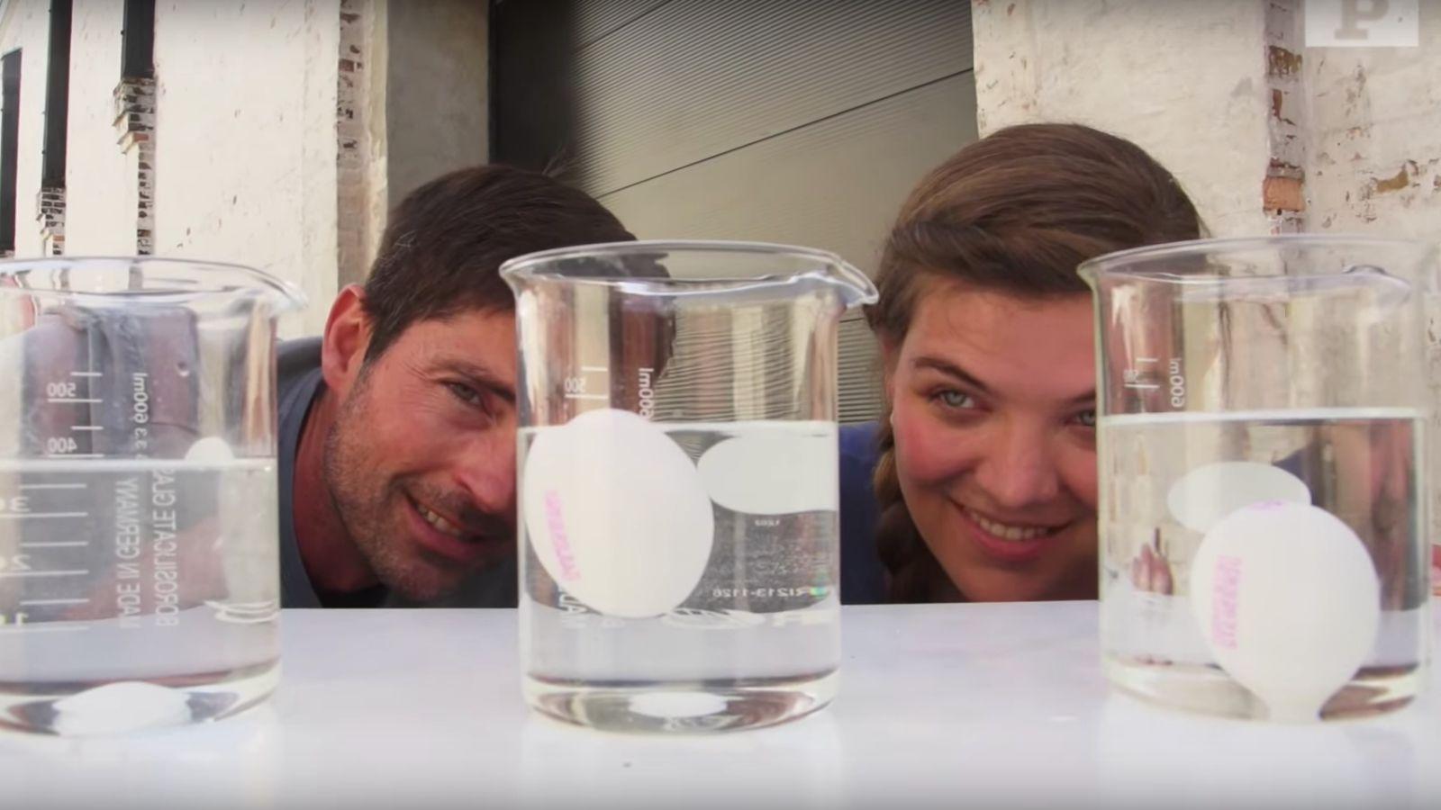 Flydende æg: I dette eksperiment skal du få et æg til at flyde på vandet.