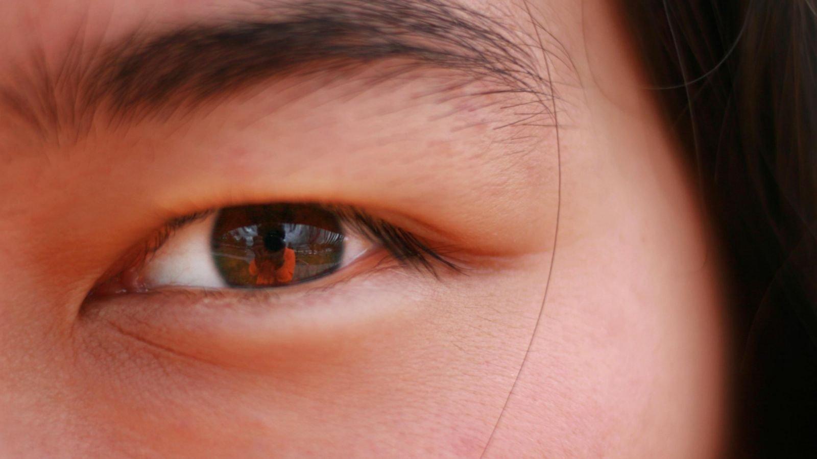 7 facts om synssansen