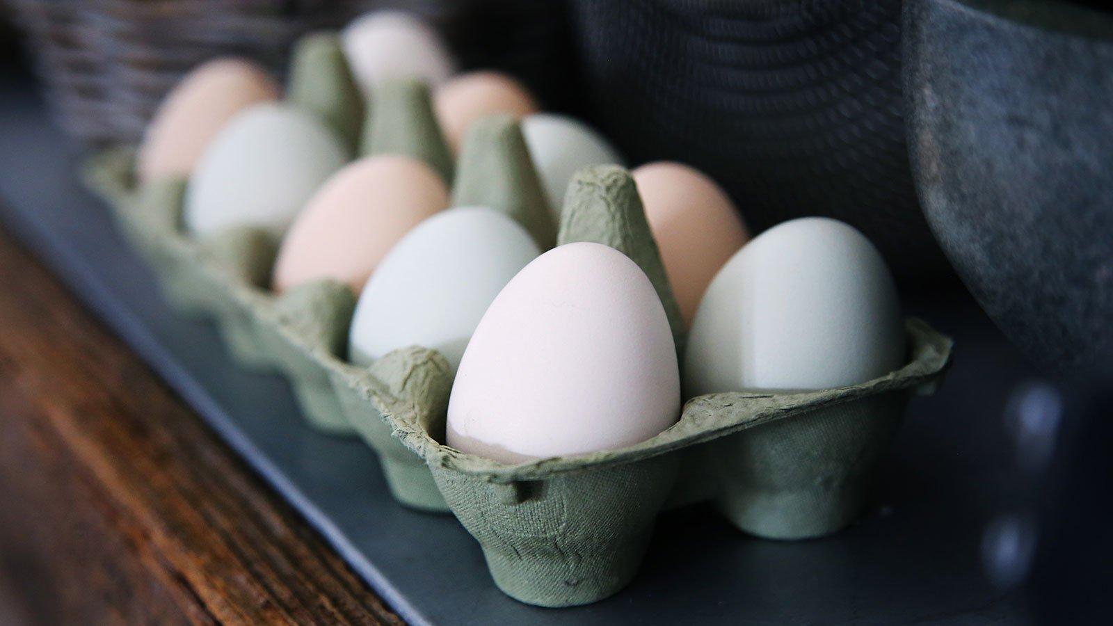 Knus ægget med din hånd