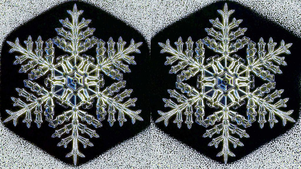 identicalsnowflakessavedforweb