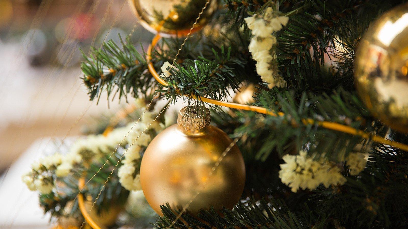 Pynt tidligt op til jul og bliv lykkelig
